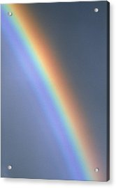 Rainbow Acrylic Print by Dr Morley Read