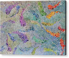 Rainbow Fish Mosaic Tile Abstract Acrylic Print by Debbie Portwood