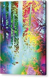 Rainbow Forest Acrylic Print by The Art of Marsha Charlebois