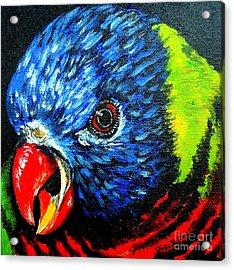 Acrylic Print featuring the painting Rainbow Lorikeet Look by Julie Brugh Riffey