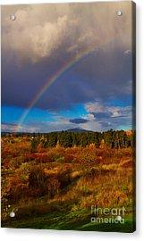 Rainbow Over Rithets Bog Acrylic Print by Louise Heusinkveld