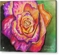 Rainbow Rose Acrylic Print by Alissa  Skoczelak