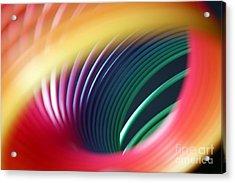 Rainbow Spring I Acrylic Print by Tracy Reese