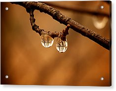 Raindrop Reflection Acrylic Print