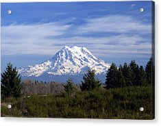 Rainier In High Contrast Acrylic Print