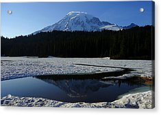 Rainier Reflected Acrylic Print by Peter Mooyman
