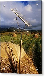 Rake With A Pitchfork On Hay In A Acrylic Print by The Irish Image Collection