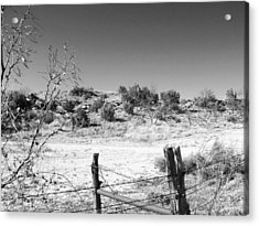 Ranch Fence And Redberry Junipers Two Acrylic Print