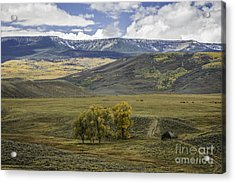 Ranch Land Acrylic Print by David Waldrop