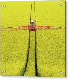 Rape Seed Spraying Acrylic Print by JT images