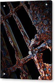 Rat In The Cage Acrylic Print by Empty Wall