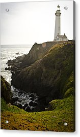 Ray Of Light Acrylic Print by Heather Applegate