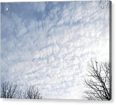 Acrylic Print featuring the photograph Reaching The Clouds by Pamela Hyde Wilson