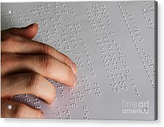 Reading Braille Acrylic Print by Photo Researchers, Inc.