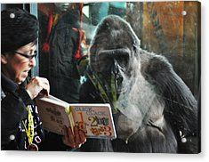 Reading Is Fundamental Acrylic Print by Bill Cannon