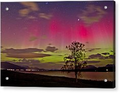 Red And Green Acrylic Print by Frank Olsen