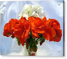 Acrylic Print featuring the photograph Red And White by Jim Sauchyn