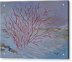 Red Branches Acrylic Print by Judith Rhue