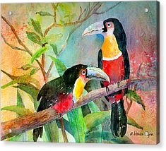 Red-breasted Toucans Acrylic Print by Arline Wagner