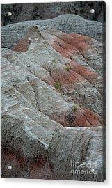 Red Acrylic Print by Chris Brewington Photography LLC