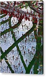 Red Crystal Refletcion Acrylic Print by Garry Gay