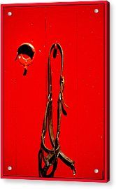 Red Door With Horse Bridle Acrylic Print by Margie Avellino