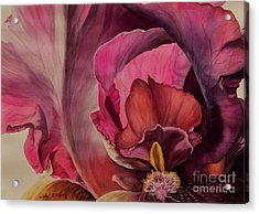 Red Explosion   Sold Acrylic Print