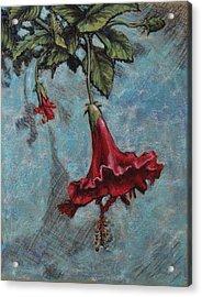 Red Flower Acrylic Print by Greg Riley