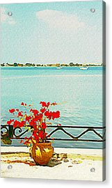Acrylic Print featuring the photograph Red Flowers On The Bay by Joan McArthur
