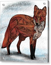 Red Fox Acrylic Print by Ben Geiger