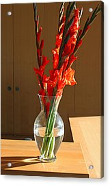 Red Glads Acrylic Print by Suzanne Gaff