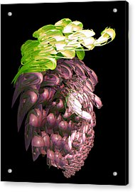 Red Grapes Acrylic Print by Linda Phelps