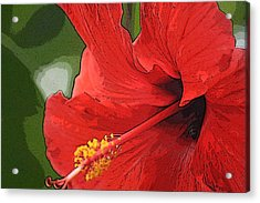 Acrylic Print featuring the photograph Red Hibiscus by Donna  Smith