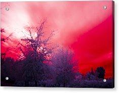 Red Acrylic Print by Nicholas Evans