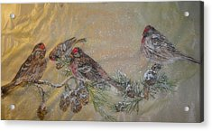 Red Polls In A Snowstorm Acrylic Print