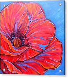 Red Poppy Acrylic Print by Jenn Cunningham