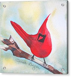 Acrylic Print featuring the painting Red Robin by Teresa Beyer