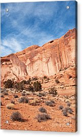 Red Rock And Blue Skies 2 Acrylic Print by Bob and Nancy Kendrick