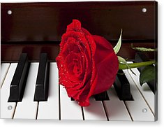 Red Rose On Piano Acrylic Print by Garry Gay