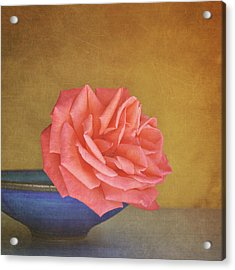 Red Rose Acrylic Print by Photo - Lyn Randle