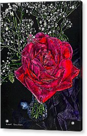 Red Rose Acrylic Print by Robert Goudreau