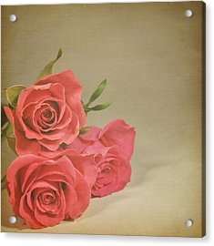 Red Roses Acrylic Print by Photo - Lyn Randle