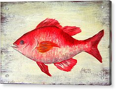 Red Snapper Studio Acrylic Print