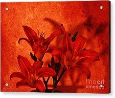 Red Tigerlilies Acrylic Print by Marsha Heiken