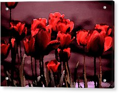 Red Tulips At Dusk Acrylic Print by Penny Hunt