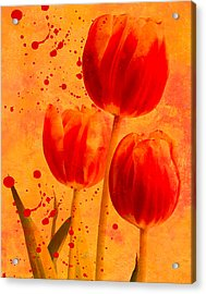 Acrylic Print featuring the photograph Red Tulips by James Bethanis