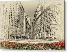 Red Tulips Acrylic Print by Svetlana Sewell