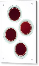 Red Wine Glasses Acrylic Print by Frank Tschakert