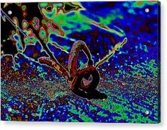 Red Worm 1 Acrylic Print by Elizabeth  Doran