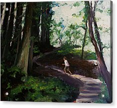 Redwood Forest Study Acrylic Print by Emily Jones